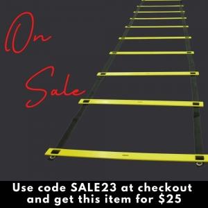 9m Ladder